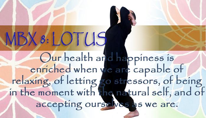 mbx 8 Lotus Posture